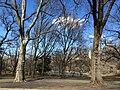 Central Park - New York - USA - panoramio (11).jpg