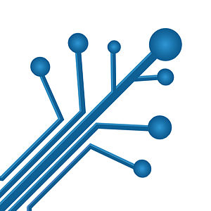 District University IEEE Student Branch - Image: Chamizo Transparente