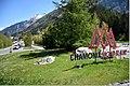 Chamonix 340DSC 0247 (48574662511).jpg