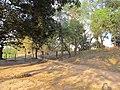 Chandraketugarh Mound - Berachampa 2012-02-24 2510.JPG