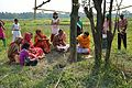 Charak Puja - Narna - Howrah 2014-04-14 0409.JPG