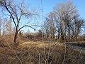 Cherkas'kyi district, Cherkas'ka oblast, Ukraine - panoramio (1136).jpg