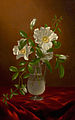 Cherokee Roses in a Glass Vase-Martin Johnson Heade.jpg