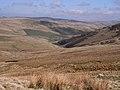 Cheviot landscape - geograph.org.uk - 1263515.jpg