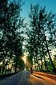 Chittagong road and cyclist.jpg