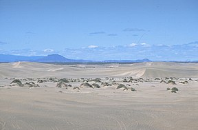 Christmas Valley Sand Dunes 01, BLM, 2008.jpg