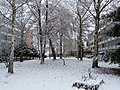 Cité Universitaire (Robertsau) sous la Neige - panoramio.jpg