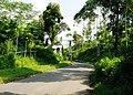 Citalem, Cipongkor, West Bandung Regency, West Java, Indonesia - panoramio (18).jpg