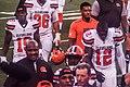 Cleveland Browns vs. Atlanta Falcons (29103513566).jpg