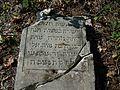 Cmentarz żydowski w Lipsku (województwo mazowieckie)-jedyna macewa.jpg