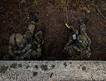 Combined Joint Operational Access Exercise 15-01 150418-F-NA975-1317.jpg