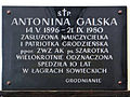Commemorative plaque of the Saint Francis church in Warsaw - 08.jpg