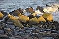 Concrete Cubes Maasvlakte - panoramio.jpg
