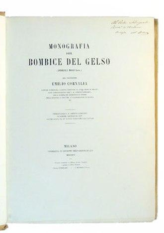Emilio Cornalia -  Monografia del bombice del gelso