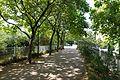 Coulée Verte René-Dumont @ Paris (28645510294).jpg