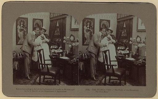 Courtship and wedding Photo 11 The stork's visit stereoscopic view (HS85-10-17208)