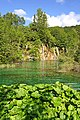 Croatia-00901 - Green is all Around (9453423904).jpg