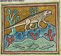 Crocodile - British Library Royal 12 F xiii f24r (detail).jpg