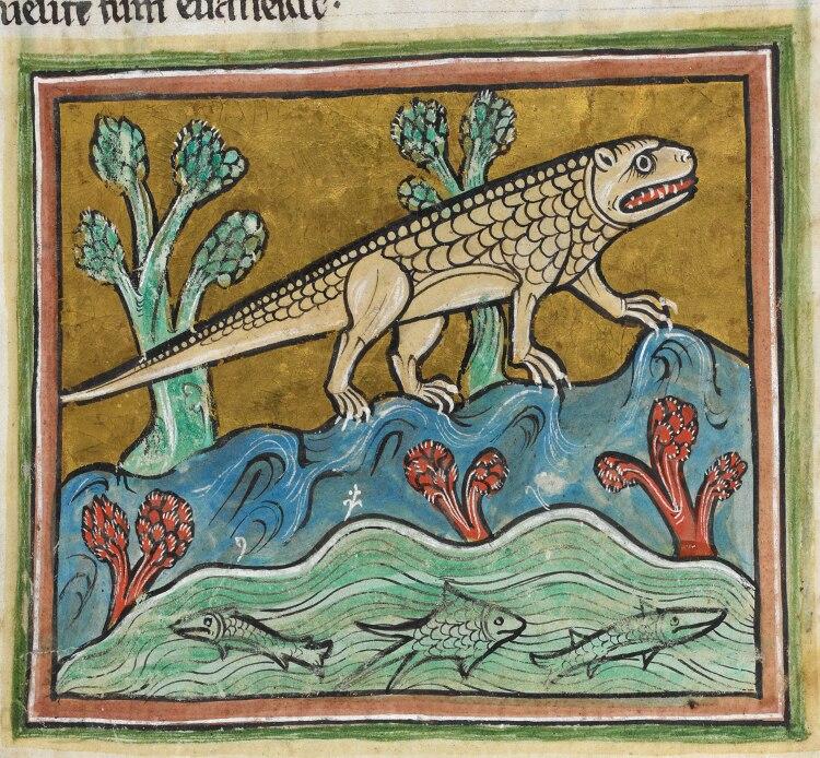 Crocodile - British Library Royal 12 F xiii f24r (detail)