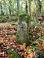 Cross, Inishkeen Island - geograph.org.uk - 2133379.jpg