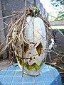Cucurbita maxima Zapallo Plomo semillería Florensa - (PV02) 2015-01-29 zapallo día 19 exorcismo 02.jpg