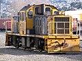 DSG 3251 Dunedin.JPG