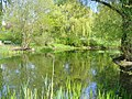 Dahlem - Triestpark - geo.hlipp.de - 35929.jpg