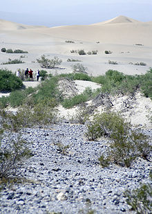 Death Valley turistoj.jpg