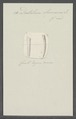 Dentalium eburneum - - Print - Iconographia Zoologica - Special Collections University of Amsterdam - UBAINV0274 081 09 0008.tif