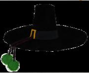 Le chapeau à pompons verts de Don Salluste.