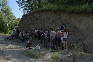 Devonian outcrops in Kryvche, Ukraine 02.jpg