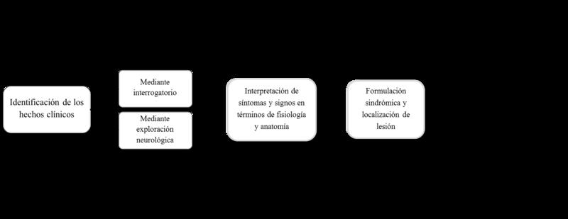 Archivo:Diagrama,Pasos del diagnostico de una enfermedad neurológica ...