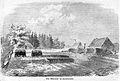 Die Gartenlaube (1863) b 461.jpg