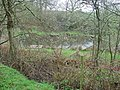 Dipping pond in the Plump Hill Environmental Centre Reserve - geograph.org.uk - 155489.jpg