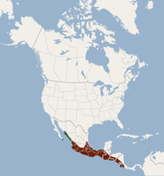 Distribution of Balantiopteryx plicata.png