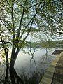 Dojran Lake 130.JPG