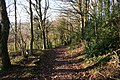 Down The Green Lane - geograph.org.uk - 1091693.jpg