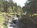 Downstream River Dee - geograph.org.uk - 806319.jpg