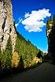 Drum de munte - panoramio.jpg