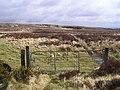 Drumbane Townland - geograph.org.uk - 741397.jpg