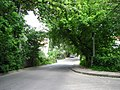 Drumul Viilor - Dimbului intersection, NE view - panoramio.jpg