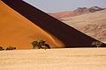 Dune (3688094176).jpg