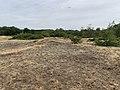 Dunes Charmes Sermoyer 3.jpg