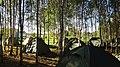 Dzerzhinsky District, Kaluga Oblast, Russia - panoramio (115).jpg