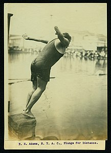 E.H. Adams, New York Athletic Club, Plunge for Distance (Swimming and Diving event at the 1904 Olympics).jpg