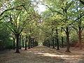 E Park.JPG