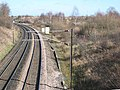 East Coast Main Line and Low Newton Junction Nature Reserve - geograph.org.uk - 351791.jpg