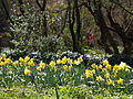 El Capricho - Jardín Artístico de la Alameda de Osuna - 35.jpg