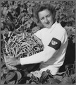 Elaine Norwich, WLA (Women's Land Army) girl from Fall River, Massachusettes, showing bushel of beans she has just... - NARA - 512803.tif