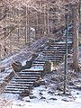 ElmwoodParkStairs1.jpg